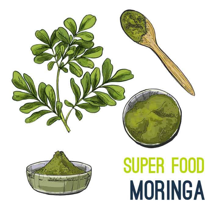 moringa super-aliment