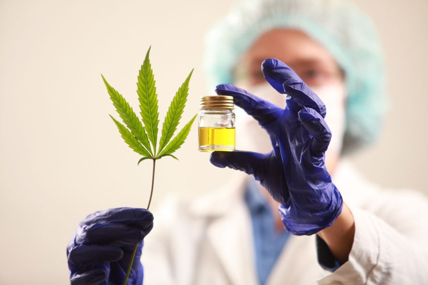 Woman doctor holding a cannabis leaf and oil.alternative medicin